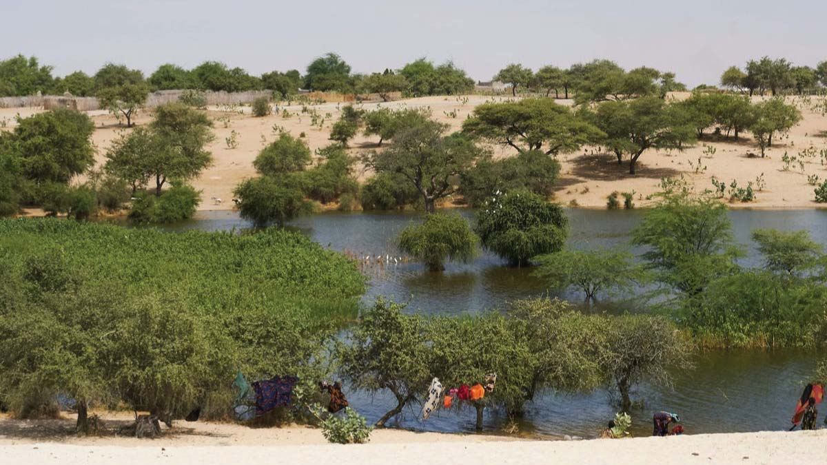 The key to peace in the Lake Chad area is water, not military action